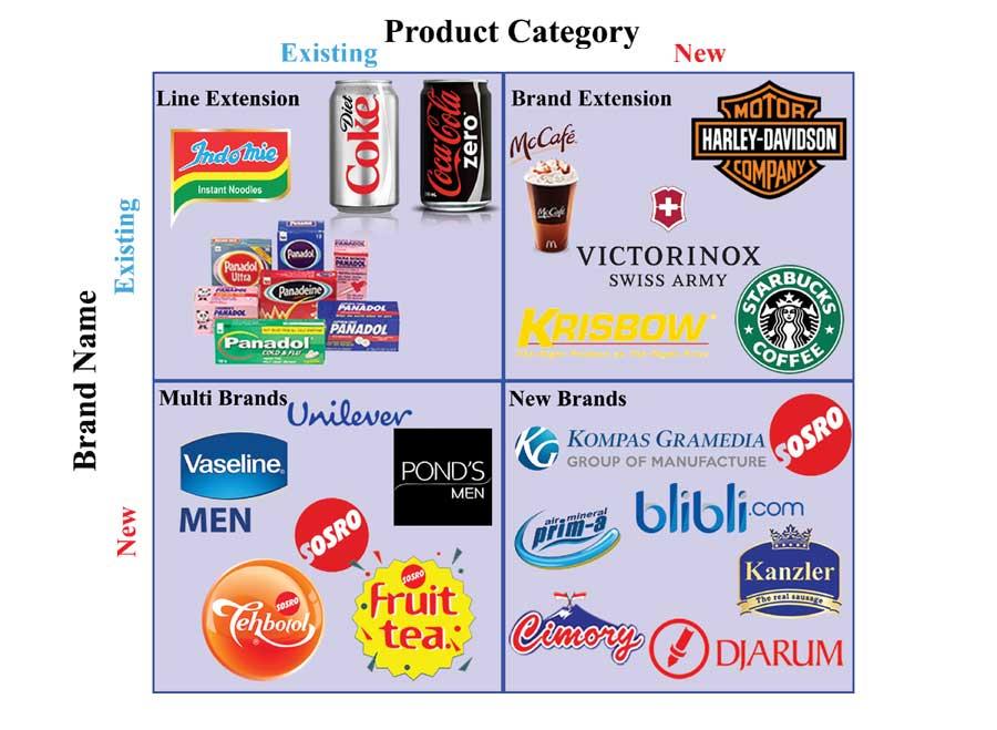 ستراتژیهای توسعه برند و تنوع محصول